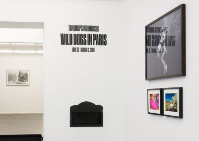 WDIP_installation_view-001